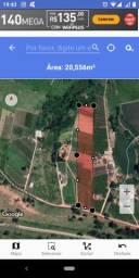 Vende-se sítio, área de 20.000 metros Campinas/Vinhedo