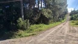 Terreno em Mafra/SC - Vila Ivete