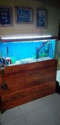 aquário 100×50x45