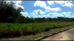 Lote Fazenda Real