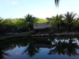 Sitio no Mojó com fundo para o mar e pertinho da avenida principal!
