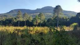 9 hectares de terra Barra do Ouro/Maquiné - RS
