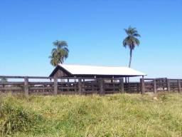 Fazenda c/ 600he, c/ 80% formada, a 5km de Itiquira-MT