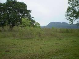 Fazenda c/ 7.615he c/ 4.200he formados, as margens da BR, Caceres-MT