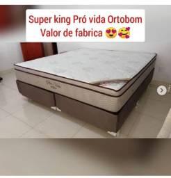 Super king ortobom super king ortobom super king ortobom super king ortobom //