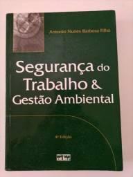 Segurança Trabalho & Gestão Ambiental 4a ed.