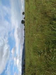 Fazenda c/ 2.700he, c/ 1.500he abertos, terra boa, Alto Paraguai-MT