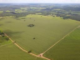 Fazenda em Rio Verde, 37 alqueires, Oportunidade
