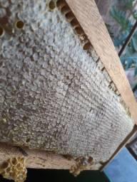 Mel de abelha