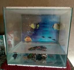 Vendo aquário de 29litros,L33,A31,C30