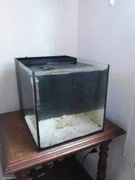 Aquario nano marinho 36 litros