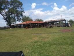 Fazenda c/ 1.335he, c/ 1.100 Abertos/Juquirado, Jangada-MT