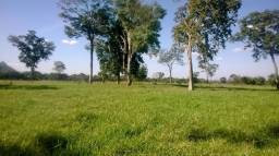 Fazenda c/ 1.700he, c/ 1.000he formados, terra boa, N S Livramento-MT