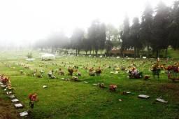 Terreno (jazigos) no cemitério Parque