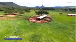 Fazenda c/ 1.500he, c/ 1.100 Formados, Itiquira/Pedra Preta-MT