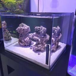 Cubo aquário marinho 70Litros + Luminária