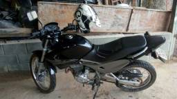 Falco - 2008