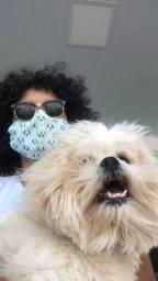 Pet sitter / passeios