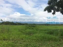 Fazenda para Pecuária 530 Hectares nas proximidades da BR 070 Várzea Grande
