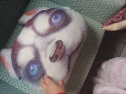 Almofada Pet