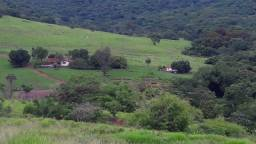Fazenda c/ 1.060he, 836he formados, Pedra Preta/Itiquira-MT