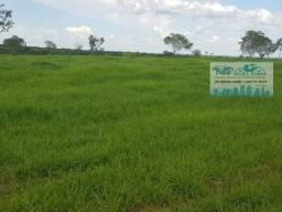 Fazenda com 1.163 hectares para pecuária