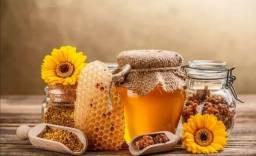 Tamara mel p vc ,o mais puro mel silvestres distriuidora direto do apiário