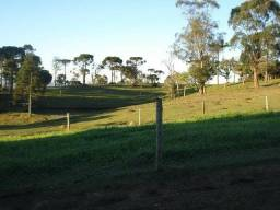 Maravilhoso Sítio - 10 hectares - Lages