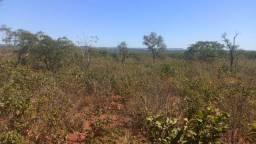 Fazenda para vender ou arrendar, barreiras piaui , beira rio parnaiba