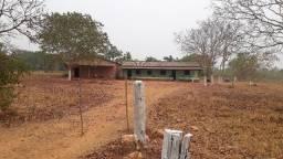 Fazenda c/ 350he, p/ reformar, terra boa e preço bom, Região do Manso