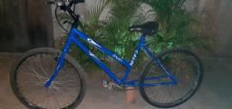 R$ 225,00 bicicleta poti