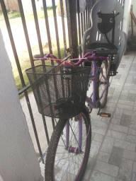 Bicicleta com cadeirinha infantil