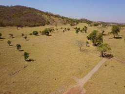 Fazenda 12 Alqueires | Região Inhumas | 60 km Goiânia-GO