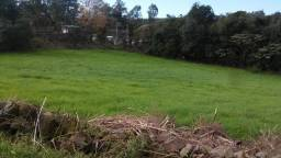 Vendo Terreno São Roque de Garibaldi