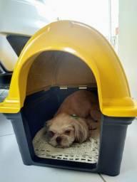 Exclusivo Casa Casinha De Cachorro Últimas Unidades