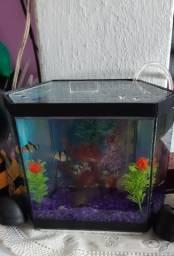 vendo aquário semi novo 4.5 litros