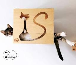 Pet house para gatos