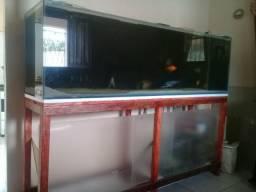 Aquario 2 metros
