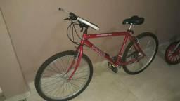 Vendo Bicicleta Adulto