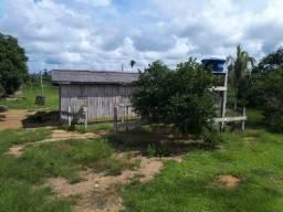 42 alqueires Alto Paraíso re#403