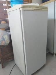 Freezer Electrolux modelo F170 (vertical)