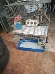 gaiolas para pássaros pequenos
