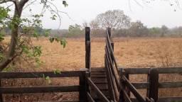 Fazenda c/ 840he, c/ 300he juquirados, terra mista boa, Região do Manso