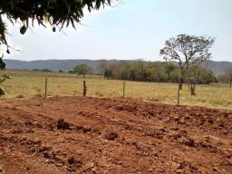 30 hectares as margens do Ribeirão Roncador
