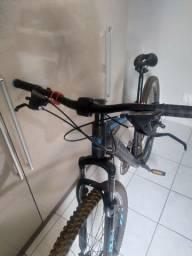 Mountain Bike Rino Everest aro 29