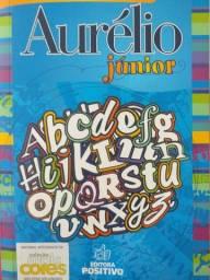 Aurélio Júnior