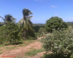 CAMAÇARI - Terreno Padrão - ABRANTES