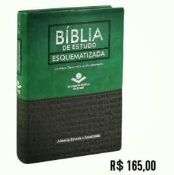 Bíblias de Estudo, Modelos a pronta entrega
