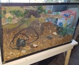 Barbada aquário completo