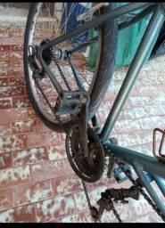 Bicicleta dupla